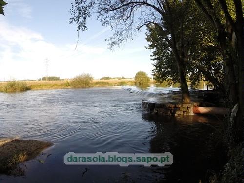 Margens rio Ave Trofa 17.JPG