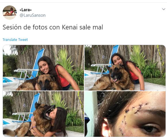 cão.PNG