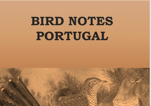 birds notes.png
