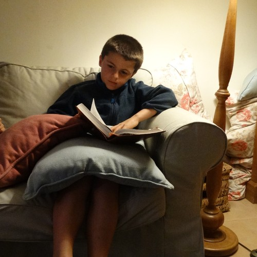David a ler (2).JPG