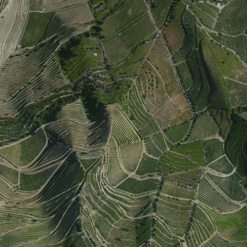 Douro Valley, Portugal.jpg