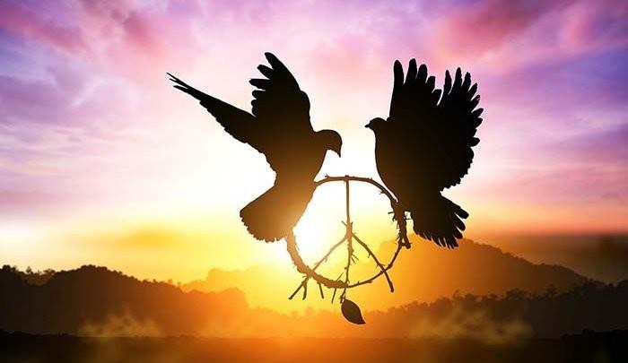 Paz, sem guerras....jpg