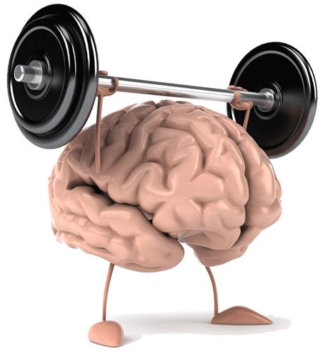 brainPower_1.png
