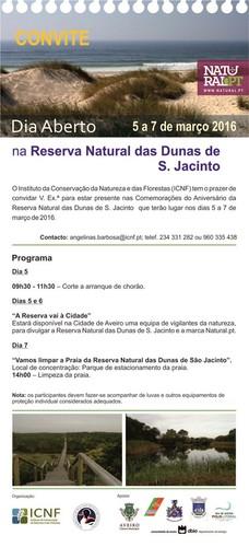 jacinto.jpg