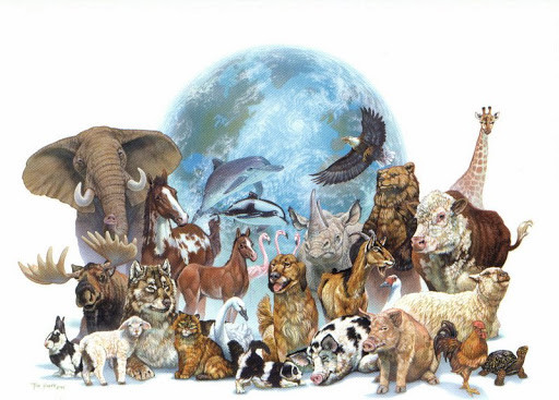 Todos os animais.jpg