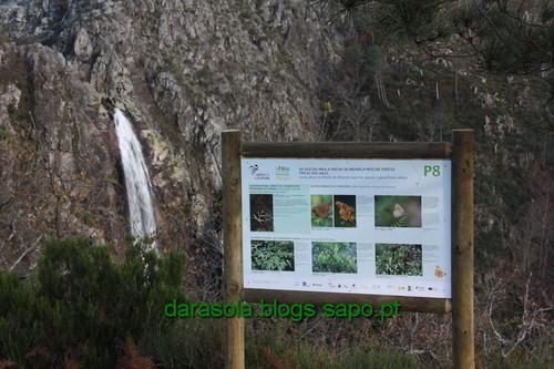 Biodiversidade_Freita_26.JPG