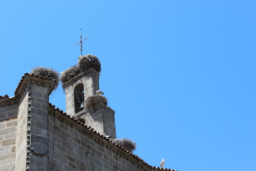 IMG_5629 Ávila