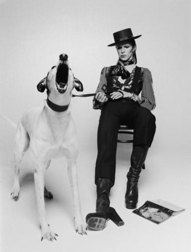 Greenman-Beautiful-Meaninglessness-of-David-Bowie-