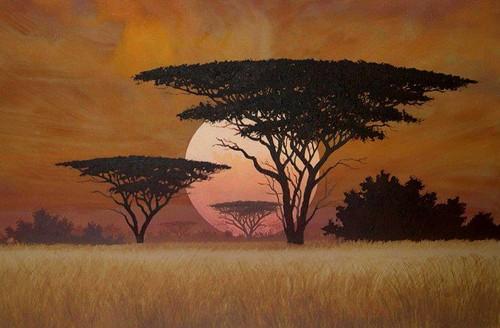 africa 4.jpg