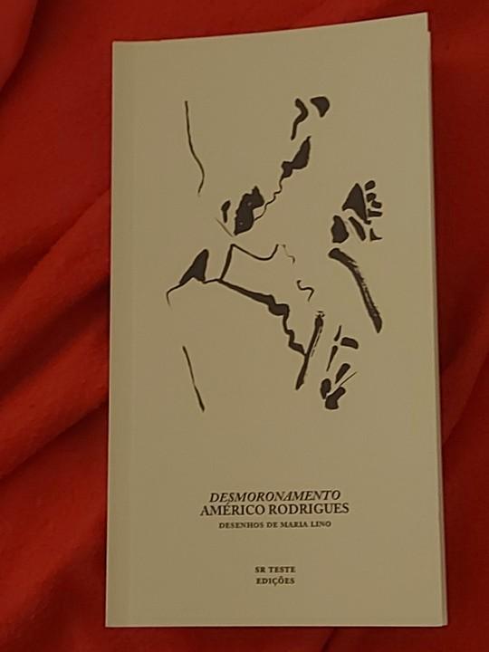 Novo Livro de Américo Rodrigues.jpg