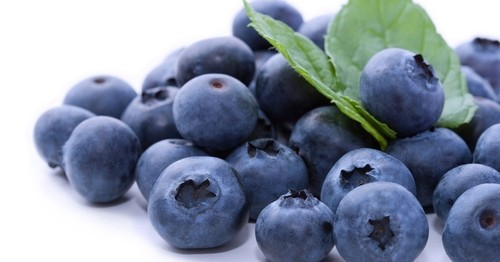 blueberry-mirtilo-1336159753401_956x500.jpg
