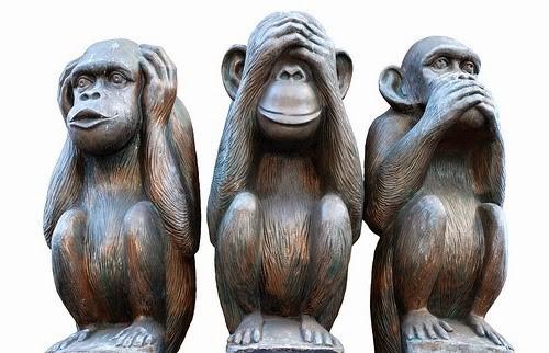 macacos.jpeg