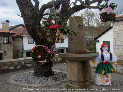 8 - Festa Internacional das Camélias em Celorico