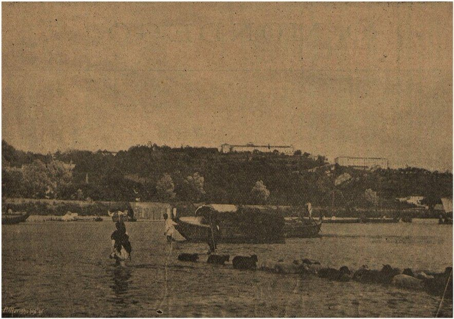 Rebanho a atravessar o rio. 1897.jpg
