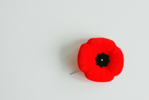 Remembrance-Day-poppy.jpg