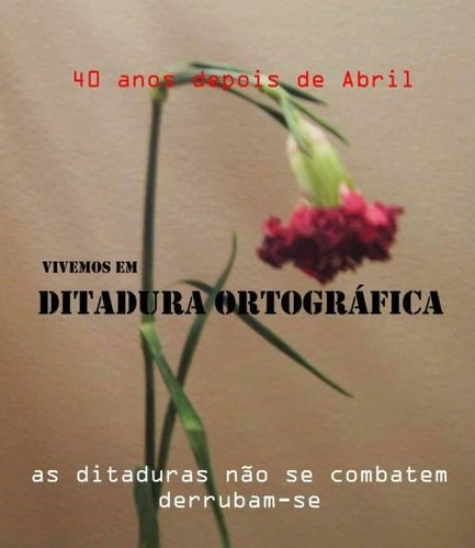 DITADURA ORTOGRÁFICA.jpg
