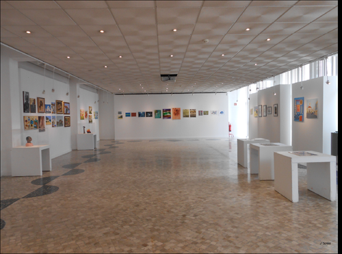 Exposição da USALMA (9). 2015. foto de João Flávios. PNG