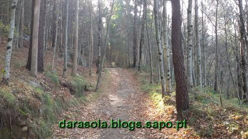 Burgo_08.jpg