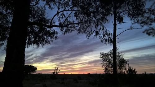 Ao Pôr-do-Sol sobre Fernão Ferro 16...francisfot