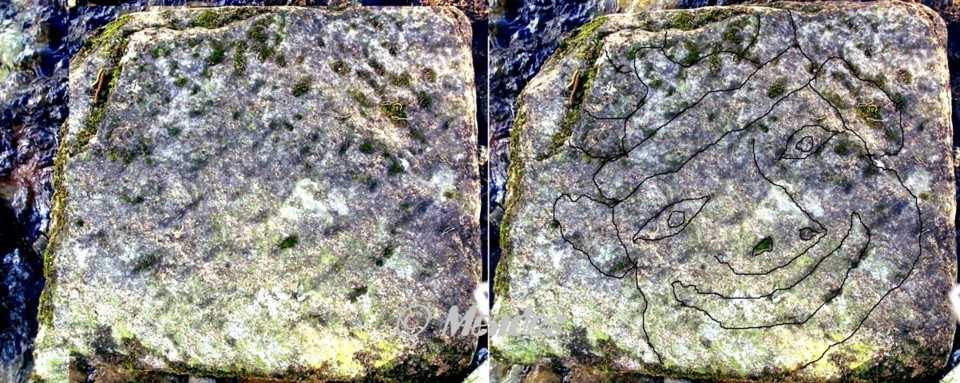 Cerva - Pedra Gravurada.jpg