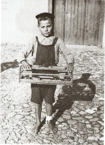 O Rapaz dos Passarinhos Américo Ribeiro.jpg