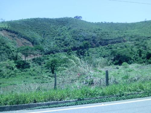 CaminhoSPedro (45).jpg