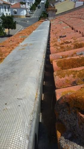 no telhado.jpg
