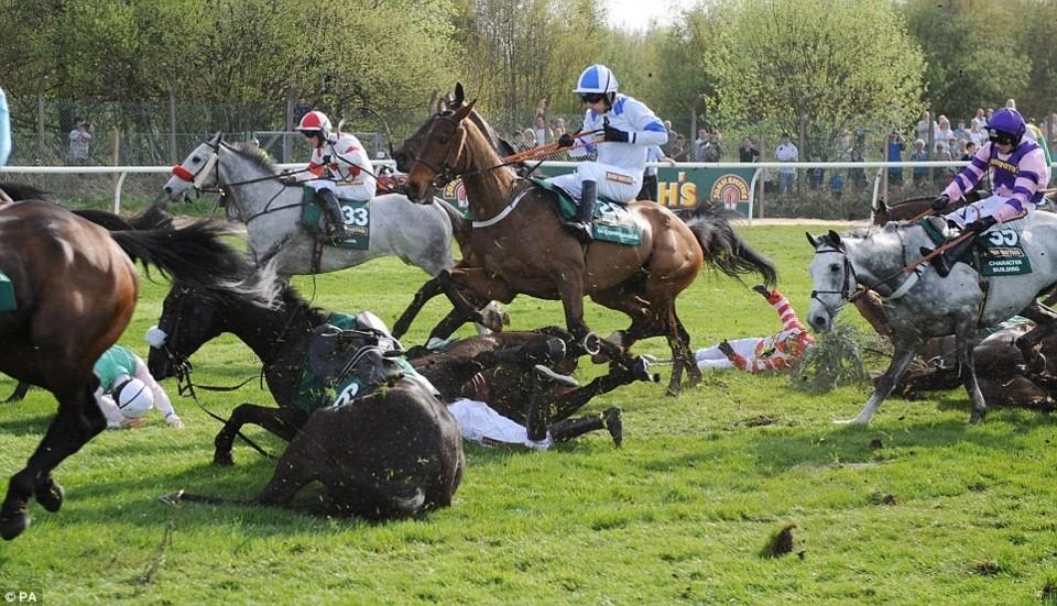 Corrida de Cavalos.jpeg