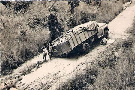 camionista 2.jpg