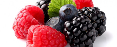 Frutos-Silvestres.bmp