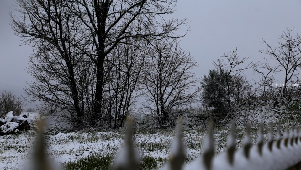 Dia de neve na Guarda - foto HS.jpg