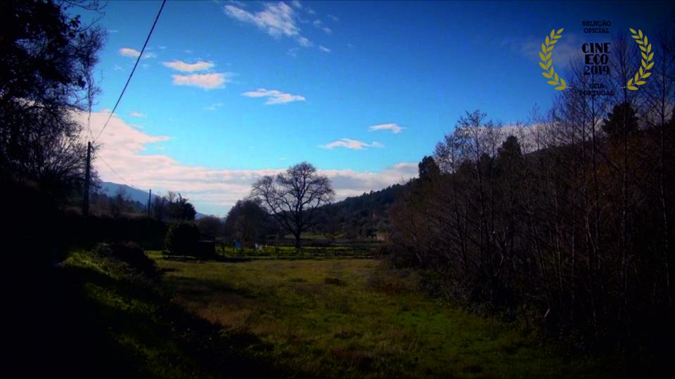 Vale da Teixeira - ASá Rodrigues.jpg