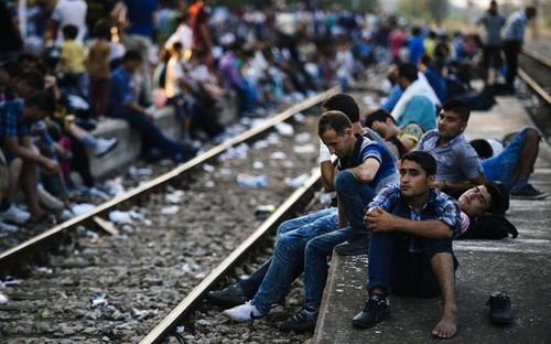 image.adapt.990.high.migrants_balkans_platform.144