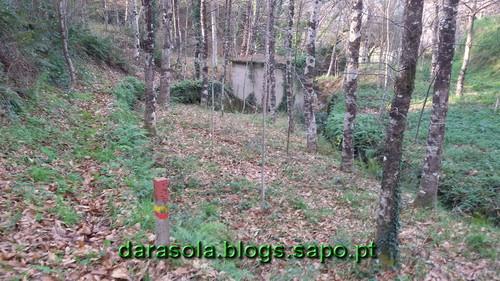 Burgo_17.jpg