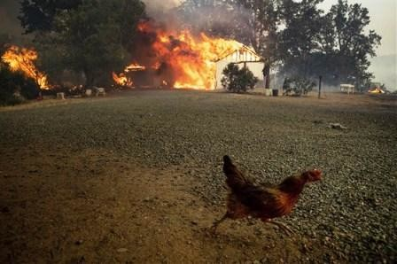 california-wildfires-today-180801-inline_e4f49e443