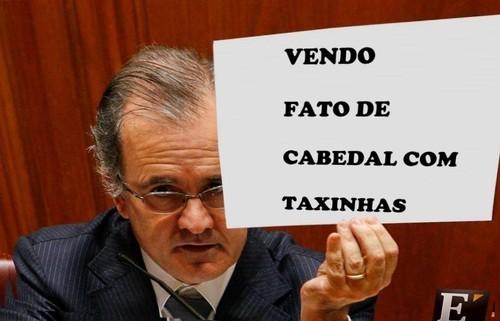 taxinhas.jpg