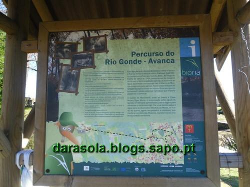 Gonde_Estarreja_06.JPG