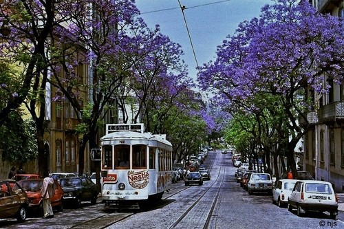 Rua Rodrigo da Fonseca, Lisboa (hjs, 198...)