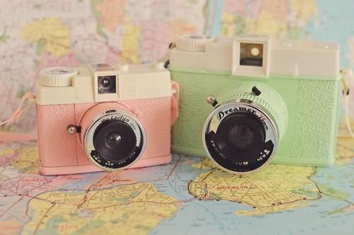 Mint-clicks-photography