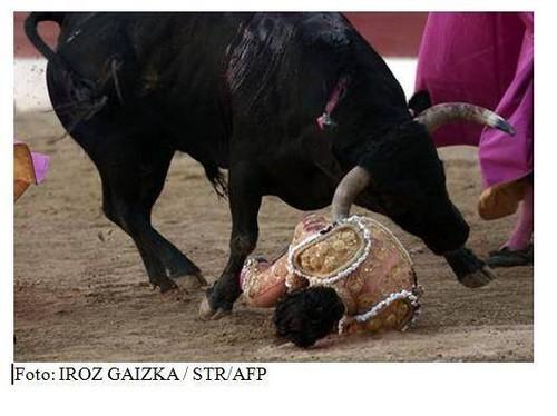 MORTE DE TOUREIRO.jpg