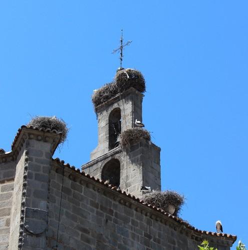 IMG_5630 Ávila