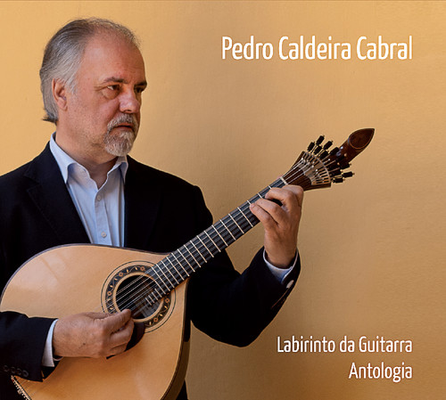 capa Pedro Caldeira Cabral.jpg