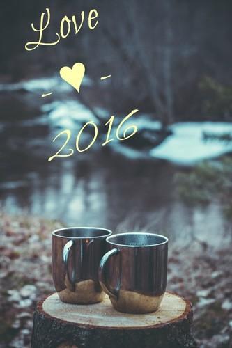 2016 hnw.jpg