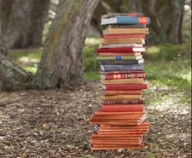 livros5.jpg