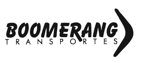 logo-boomerang_CS.jpg