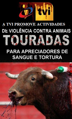TVITOURADAS.png