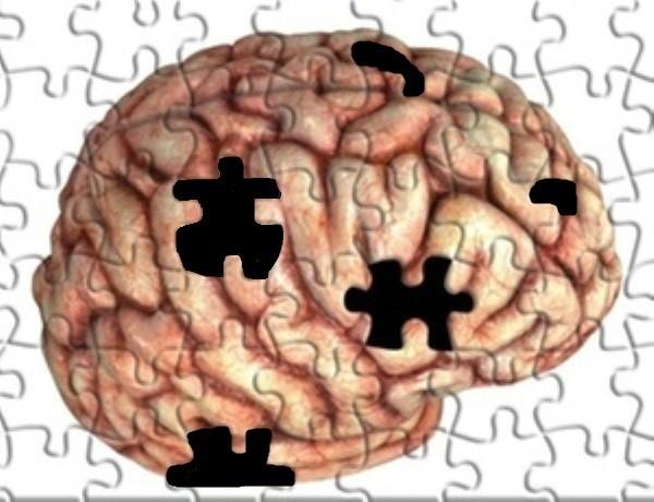 PuzzleCerebro.jpg