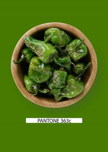 Pantone-food-pimientos-verdes-gastromedia-3.jpg
