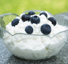 blueberry-cottage-cheese1-237x225.jpg