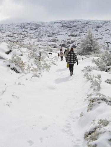 Snow hike, Serra da Estrela, Portugal.jpg